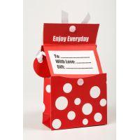 Btech mini zsebes ajándéktasak, piros
